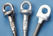 Safety Eyebolts | Rope Access | Fall Arrest Systems | PWC UK